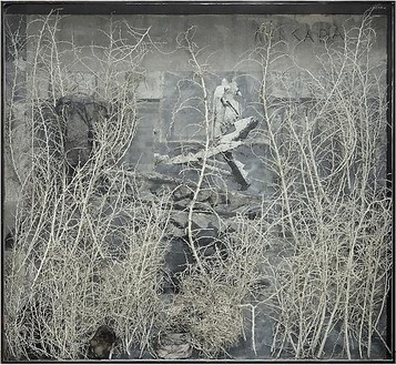 Anselm Kiefer, Merkaba, 2010 Photograph, acrylic, shellac, ash, cotton dress, burned books, and plaster coated thorn bushes in glass and steel frame, 111 × 120 ⅞ × 13 13/16 inches (282 × 307 × 35 cm)© Anselm Kiefer