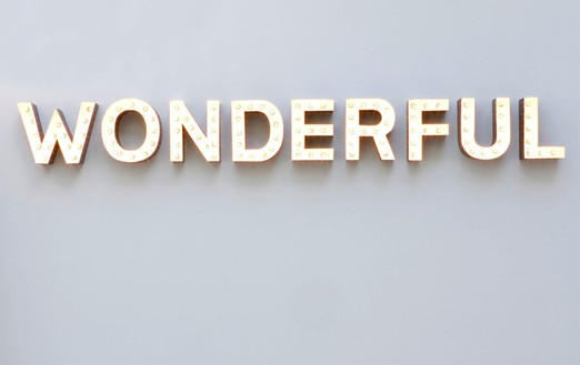 Carsten Höller, Wonderful, 2008 Aluminum channel letters, bulbs, DMX controller, 10 11/16 × 98 ½ × 4 inches (27.3 × 250.2 × 10.2 cm)Photo by Douglas M. Parker Studio