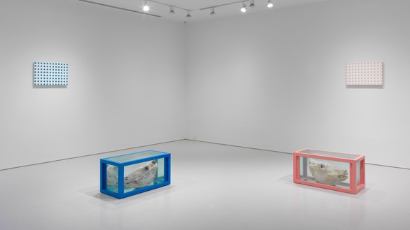 Damien Hirst, Adam and Eve, Blue for Adam and Pink for Eve, 1997–2003 Glass, steel, formaldehyde solution, cow's head, bull's head, and household gloss on canvas, in 4 parts, each vitrine: 18 × 38 × 18 inches (45.7 × 91.4 × 45.7 cm); each canvas: 15 × 23 inches (38.1 × 58.4 cm)© Damien Hirst and Science Ltd. All rights reserved, DACS 2018