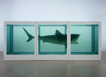 Damien Hirst, The Physical Impossibility of Death in the Mind of Someone Living, 1991 Glass, steel, formaldehyde solution, and tiger shark, 84 × 204 × 84 inches (211 × 518 × 211 cm)© Damien Hirst and Science Ltd. All rights reserved, DACS 2018