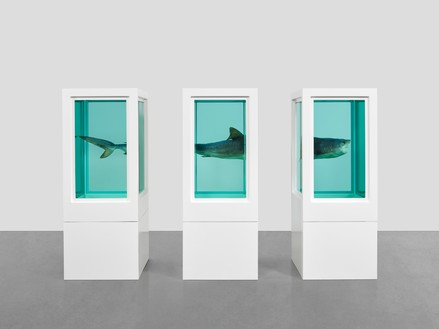 Damien Hirst, Myth Explored, Explained, Exploded, 1993–99 Glass, painted steel, silicone, monofilament, shark, and formaldehyde solution, in 3 parts, dimensions variable© Damien Hirst and Science Ltd. All rights reserved, DACS 2018. Photo: Prudence Cuming Associates Ltd