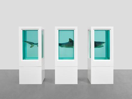 Damien Hirst Art For Sale Nhs