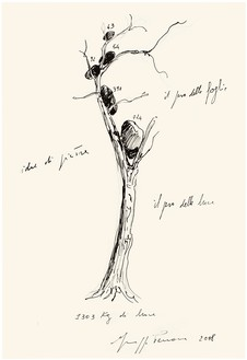 Giuseppe Penone, Idee di pietra (Ideas of Stone), 2008 Pencil and ink on paper, 18 ⅞ × 13 inches (48 × 33 cm)© Archivio Penone
