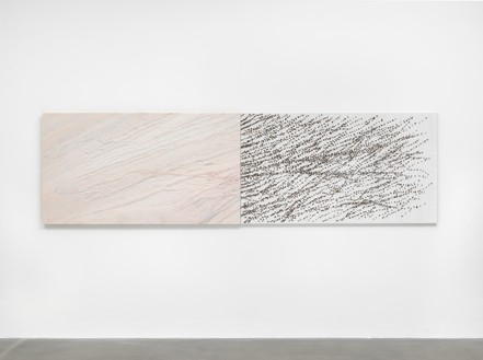 Giuseppe Penone, Pelle di marmo e spine d'acacia – Livia (Skin of Marble and Acacia Thorns – Livia), 2006 Pink marble, canvas, silk, and acacia thorns, 39 ⅜ × 139 ¾ × 2 ⅜ inches (100 × 355 × 6 cm)© Archivio Penone. Photo: Mike Bruce