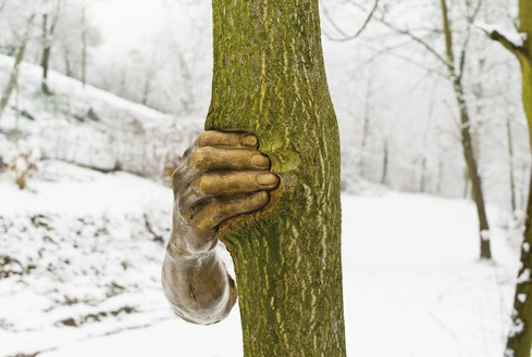Giuseppe Penone, Alpi Marittime – Continuerà a crescere tranne che in quel punto (Maritime Alps – It Will Continue to Grow except at That Point), 1968–2003 Tree (Ailanthus altissima) and bronze, hand: 15 ¾ × 4 × 5 ⅛ inches (40 × 10 × 13 cm), tree: 275 ⅝ × 11 ⅞ × 11 ⅞ inches (700 × 30 × 30 cm) approx., San Raffaele Cimena, Italy, 2008© Archivio Penone