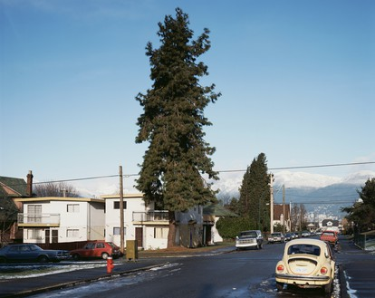 Jeff Wall, The Pine on the Corner, 1990 Transparency in lightbox, 46 ⅞ × 58 ¾ inches (119 × 149 cm)© Jeff Wall