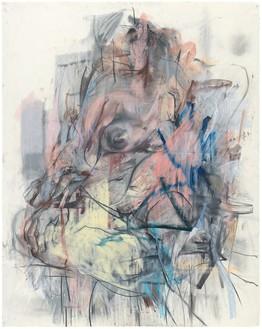 Jenny Saville, Pastel Bodies, 2014 Pastel on paper, 59 ⅞ × 48 ¼ inches (152 × 122.5 cm)© Jenny Saville
