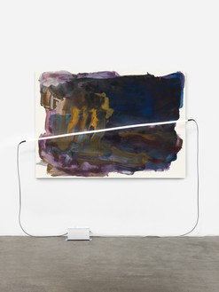 Mary Weatherford, Ahab's, 2014 Flashe and neon on linen, 55 ¼ × 93 inches (140.3 × 236.2 cm), Private Collection© Mary Weatherford Studio. Photo: Fredrik Nilsen