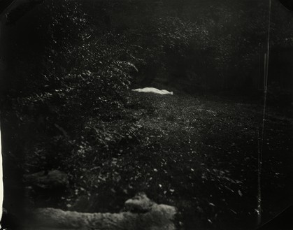 Sally Mann, Untitled, 2000 Gelatin silver print, 30 × 38 inches (76.2 × 96.5 cm), edition of 3© Sally Mann