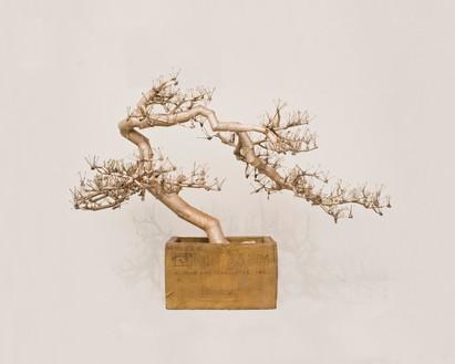 Tom Sachs, Bonsai, 2016 Bronze, 65 × 91 × 57 inches (165.1 × 231.1 × 144.8 cm)© Tom Sachs. Photo: Genevieve Hanson