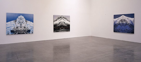 Installation view, photo by Rob McKeever