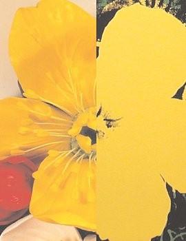 Jeff Koons | Andy Warhol: Flowers, 980 Madison Avenue, New York