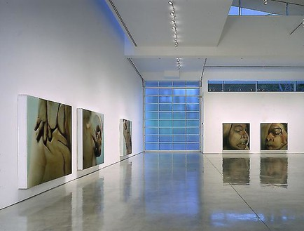 Jenny Saville & GLEN LUCHFORD: Closed Contact Installation view