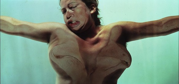 Jenny Saville & Glen Luchford, Closed Contact #13, 1995–96 C-print mounted in Plexiglas, 60 × 120 × 6 inches (152.4 × 304.8 × 15.2 cm), edition of 6