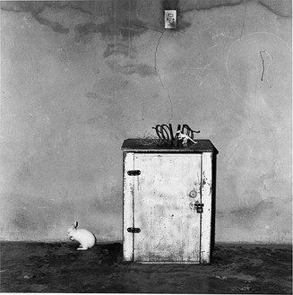 Roger Ballen, Loose rabbit, 2002 Selenium toned gelatin silver print, 15 × 15 inches (38.1 × 38.1 cm) or 28 × 28 inches (71.1 × 71.1 cm), edition of 20