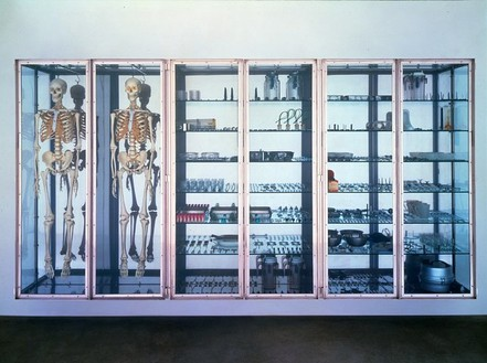 Damien Hirst, Stripteaser, 2000 Stainless steel and glass cabinet with two skeleons and medical instruments, 77 × 148 × 20 inches (195.6 × 376 × 50.8 cm). Private collection