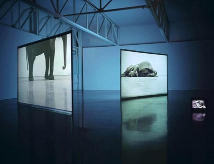 Installation view Artwork © Studio lost but found/VG Bild-Kunst, Bonn