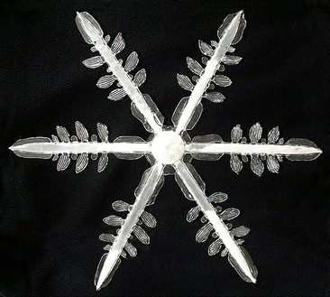 Carsten Höller, Snowflake II, 2000–05 Glass, chemical substance, 23 ⅝ × 23 3/16 × 4 inches (60 × 59 × 10 cm), edition of 10