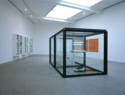 Damien Hirst: A Thousand Years & Triptychs Installation view