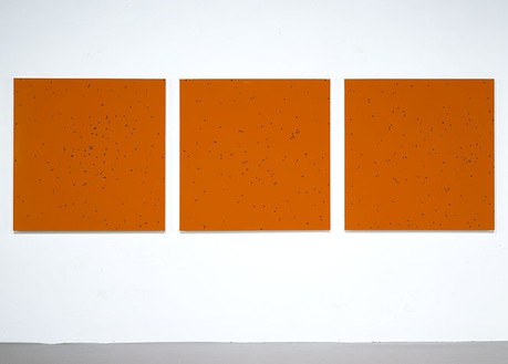 Damien Hirst, Such is Nature and the Life of Man, 2006 Flies and household gloss on canvas, 3 panels: 48 × 48 inches each (121.9 × 121.9 cm)