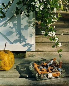 Roe Ethridge, Apple and cigarettes, 2004/06 Chromogenic print, 41 × 32 ¾ inches (104.1 × 83.2 cm), edition of 5