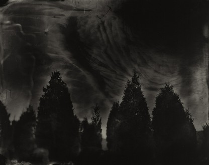 Sally Mann, Battlefields, Fredericksburg, (Cedar Trees), 2000 Gelatin silver print, 38 × 48 inches, (96.5 × 121.9 cm), edition of 5