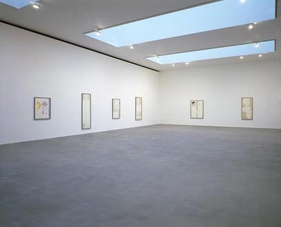 Mike Kelley: Hermphrodite Drawings Installation view