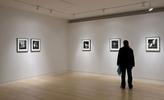 Sally Mann: Proud Flesh Installation view