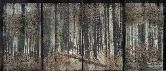 Anselm Kiefer, Fitzcarraldo, 2010 Oil, emulsion, acrylic, shellac, ash, thorn bushes, resin ferns, synthetic teeth, lead, and rust on canvas, in glass and steel frames; in 4 parts; overall: 130 ¾ × 302 ⅜ × 13 ¾ inches (332 × 768 × 35 cm)© Anselm Kiefer