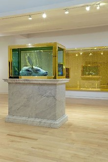 Installation view Artwork © Damien Hirst and Science Ltd. All rights reserved, DACS 2010