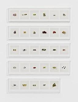 Taryn Simon, FRUIT, MISC. (PROHIBITED), 2010 29 archival inkjet prints in 5 Plexiglas boxes, Box 1-4: 9 ¼ × 44 ½ × 2 ½ inches (23.5 × 113 × 6.4cm); Box 5: 9 ¼ × 37 ¼ × 2 ½ inches ( 23.5 × 94.6 × 6.4cm), edition of 4Photo by Douglas M. Parker Studio