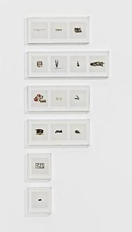 Taryn Simon, ANIMAL CORPSES (PROHIBITED), ANIMAL PARTS (PROHIBITED), ANIMAL SKELETONS (PROHIBITED), ANIMAL SPECIMENS (PROHIBITED), BUTTERFLIES (PROHIBITED), SNAILS (PROHIBITED), 2010 15 archival inkjet prints in 6 Plexiglas boxes, Box 1: 9 ¼ × 22 ¾ × 2 ½ inches (23.5 × 57.8 × 6.4cm); Box 2: 9 ¼ × 30 × 2 ½ inches (23.5 × 76.2 × 6.4cm); Box 3 & 4: 9 ¼ × 22 ¾ × 2 ½ inches (23.5 × 57.8 × 6.4cm); Box 5 & 6: 9 ¼ × 8 ¼ × 2 ½ inches (23.5 × 21 × 6.4cm), edition of 4Photo by Douglas M. Parker Studio