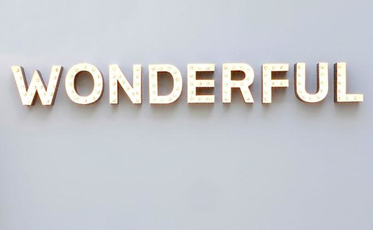 Carsten Höller, Wonderful, 2008 (view with lights on) Aluminum channel letters, bulbs, and DMX controller, 10 ¾ × 98 ½ × 4 inches (27.3 × 250.2 × 10.2 cm)© Carsten Höller