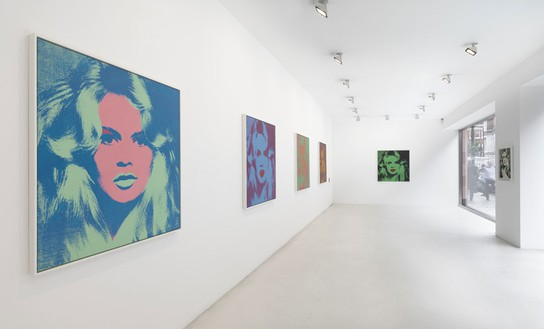 Andy Warhol: Bardot Installation view, photo by Mike Bruce