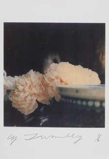 Cy Twombly, Peonies, 1980 Color dry-print, 15 ⅞ × 11 inches (40.3 × 27.9 cm), edition 1/6© Nicola Del Roscio Foundation