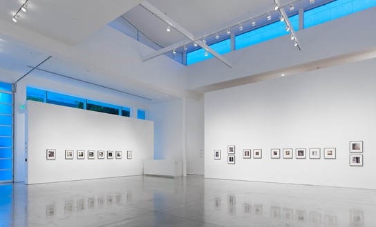 Installation view Artwork © Nicola Del Roscio Foundation. Photo: Douglas M. Parker Studio