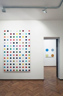 Installation view Artwork © Damien Hirst and Science Ltd. All rights reserved, DACS 2012. Photo: Costas Picadas