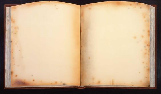 Ed Ruscha, Old Book Today, 2011–12 Acrylic on canvas, 72 × 124 inches (182.9 × 315 cm)© Ed Ruscha. Photo: Paul Ruscha