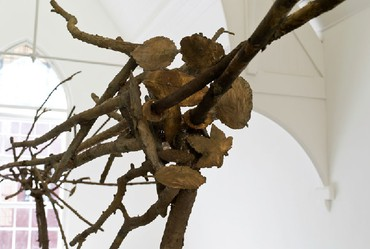 Giuseppe Penone: Intersecting Gaze / Sguardo incrociato, Davies Street, London