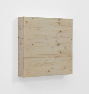 Elisa Sighicelli, Untitled (Wood), 2012 Photograph mounted on the same wood photographed, 23 ⅝ × 23 ⅝ × 5 ¾ inches (60 × 60 × 12 cm)