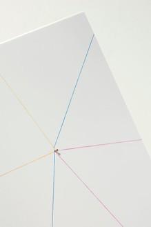 Elisa Sighicelli, Untitled (Punctum), 2012 (detail) Laminated chromogenic print mounted on aluminum, nail, 22 1/16 × 22 1/16 inches (56 × 56 cm), edition of 3