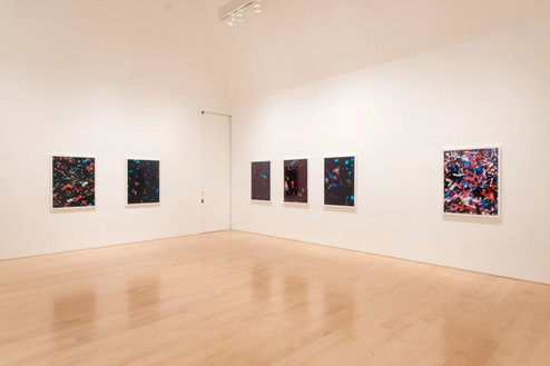 Installation view Photo by Josh White