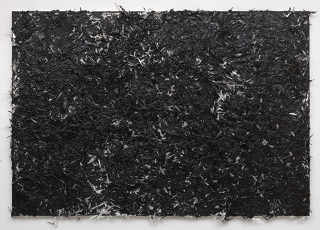 Dan Colen, hippity flippity!, 2012 Tar and feathers on canvas, 81 × 118 inches (205.7 × 299.7 cm)© Dan Colen. Photo: Rob McKeever