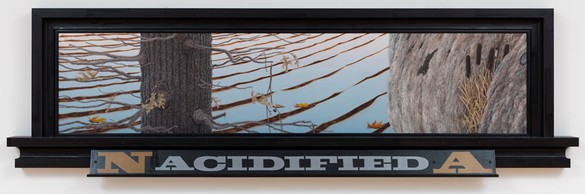 Neil Jenney, North America Acidified, 1982–13 Oil on wood in artist's frame, 34 × 115 ⅜ × 5 inches (86.4 × 293.1 × 12.7 cm)