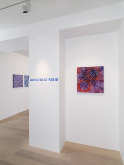 Installation view © Alberto Di Fabio Photo by Annik Wetter