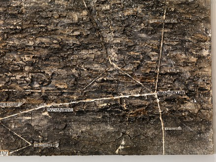 Anselm Kiefer, Lichtfalle, 1999 (detail) Shellac, emulsion, glass, and steel trap on linen, 149 × 220 inches (378.5 × 558.8 cm)© Anselm Kiefer. Photo: Rob McKeever