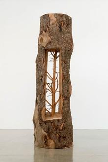 Giuseppe Penone, Albero porta—cedro / Door Tree—Cedar, 2012 Cedar wood, 125 × 40 × 40 inches (317.5 × 101.6 × 101.6 cm)© Giuseppe Penone, photo by Josh White