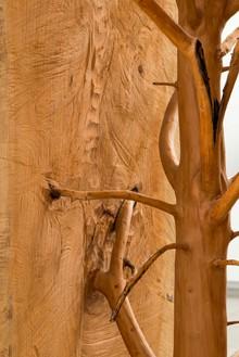 Giuseppe Penone, Albero porta—cedro / Door Tree—Cedar, 2012 (detail) Cedar wood, 125 × 40 × 40 inches (317.5 × 101.6 × 101.6 cm)© Giuseppe Penone, photo by Josh White