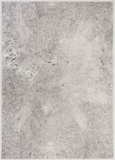 Richard Wright, Untitled, 2013 Heliogravure paint on handmade Zerkall Butten paper, 22 ¼ × 15 ⅞ inches (56.5 × 40.3 cm), edition of 90© Richard Wright