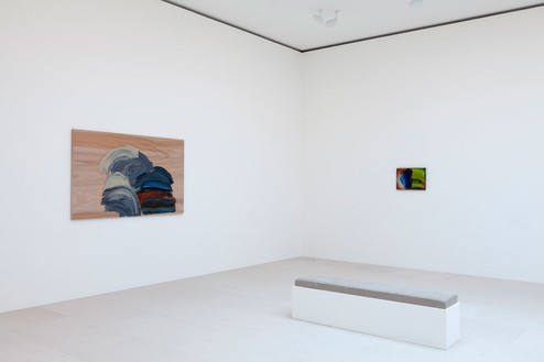 Installation view Artwork © Howard Hodgkin Estate. Photo: Zarko Vijatovic